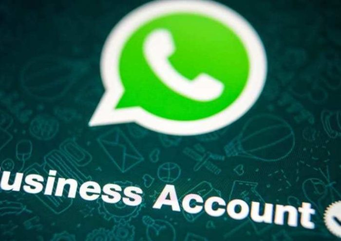 WhatsApp Business 2.19.50